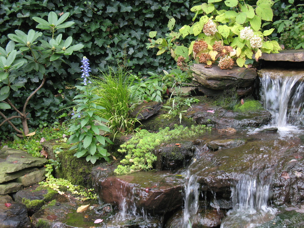 Water garden landscape design for Water landscape design